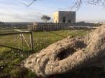 """Lu Castieddu"" Castello di Alceste"