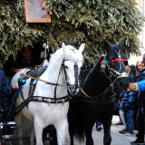 Festa S. Giuseppe - Carrettieri