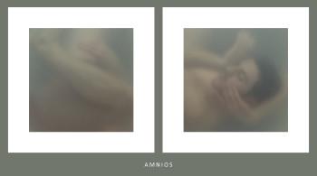 estratto progetto Amnios