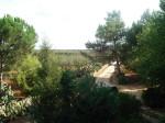 Una Giornata in Masseria, alla riscoperta di antiche tradizioni pugliesi