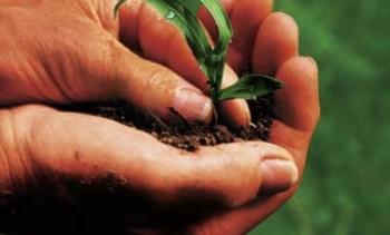 14837-1-agricoltura-biologica