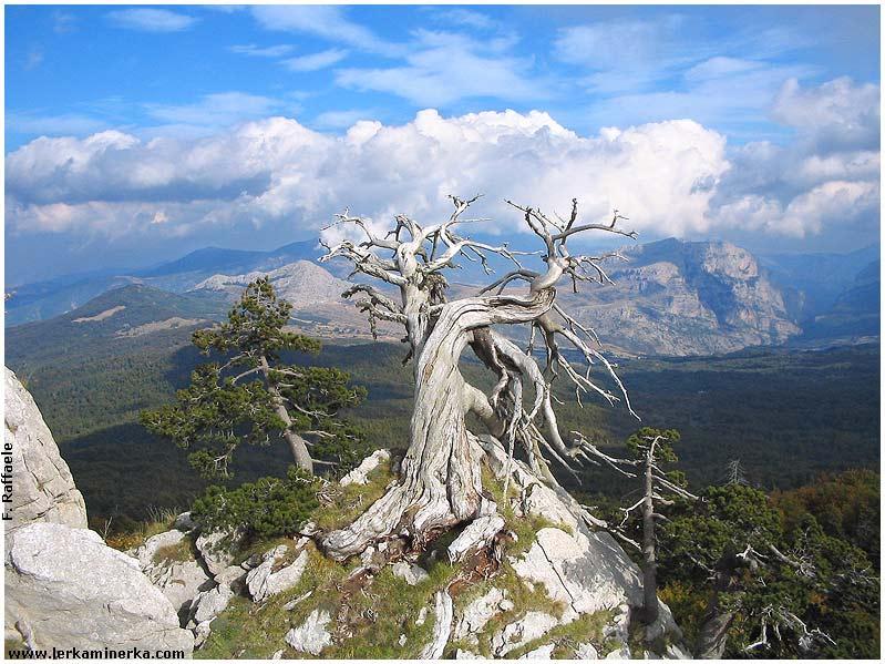 Percorsi, sentieri e trekking in Basilicata