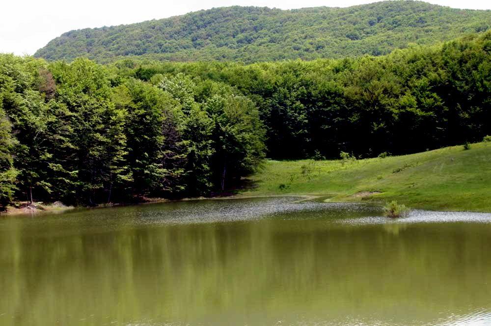 Bellezze nascoste in basilicata lago scuro e il bosco di ruoti for Lago per tartarughe