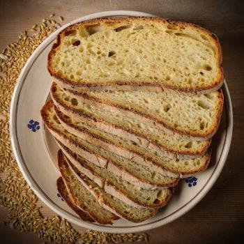 Pane di Laterza Puglia