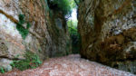 Il Canyon del Gargano
