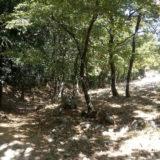 percorsi naturalistici Puglia
