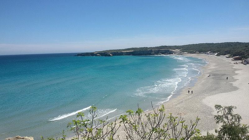 spiagge cani Salento